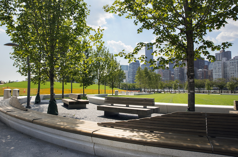 Cornell Tech campus green space