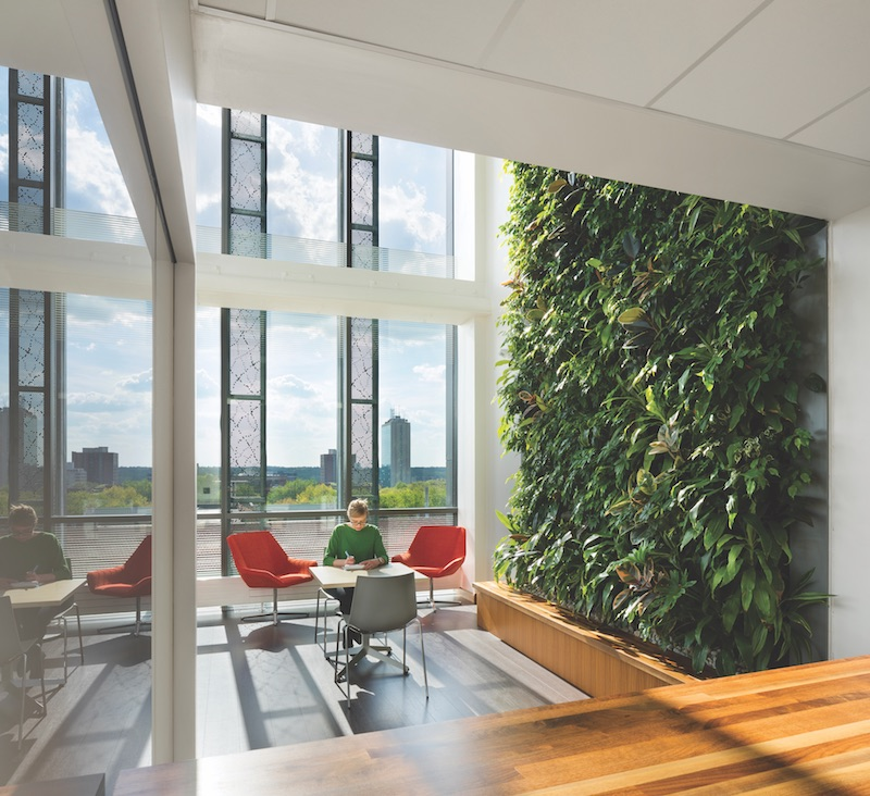 Weiser Hall interior living wall