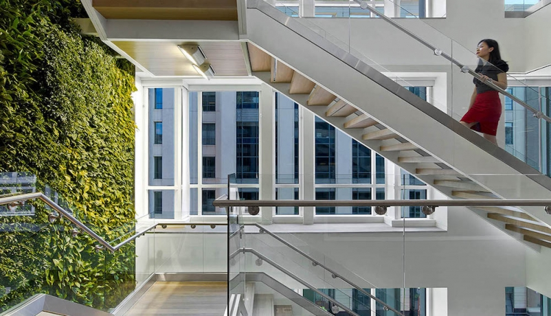 Buildings that invest in wellbeing see healthy returns