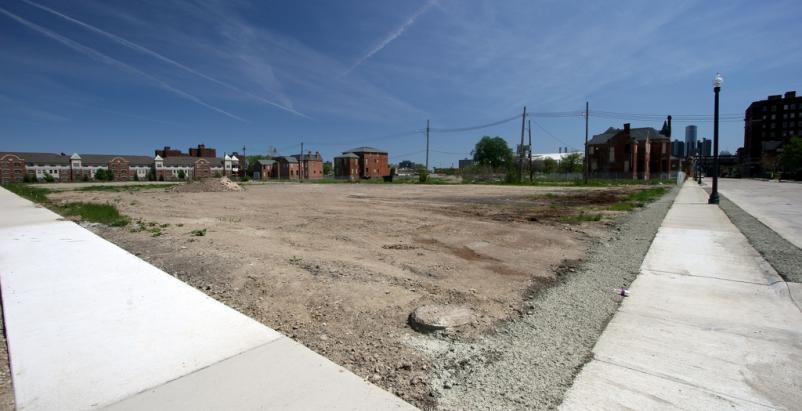 Detroit plans massive effort to convert vacant properties to green spaces
