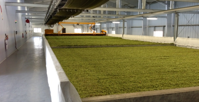 New metal buildings have helped boost productivity at Perrault Farms in Yakima V