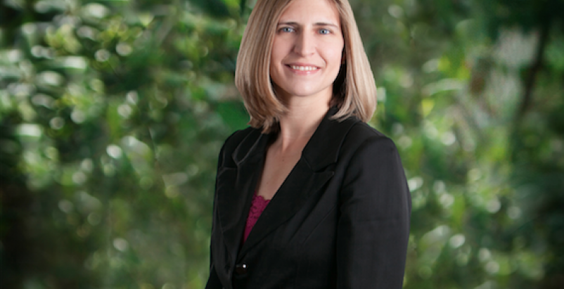 Rachel C. Palisin, PE, LEED AP BD+C, has been promoted to Senior Engineer.
