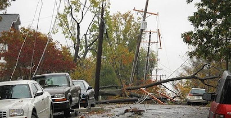 Atermath of SuperStorm Sandy, Arlington, Va. Photo: Albert Herring / Wikimedia C