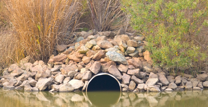 Image: EPA
