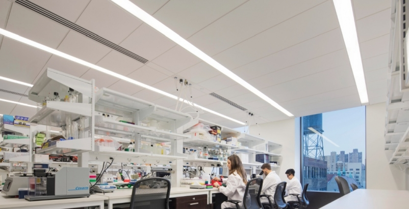 The Mount Sinai Hess Center for Science and Medicine, in New York, a winner in t