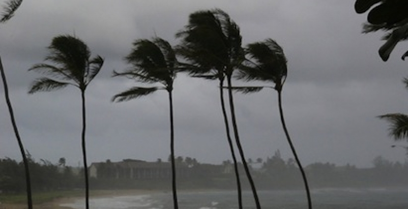 More severe wind storms should prompt nationwide reexamination of building codes