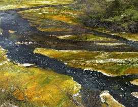 U.S. House scuttles EPA plan to expand definition of waters in Clean Water Act