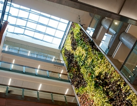 The biofilter provides the majority of the building's fresh air intake to substantially reduce energy usage.
