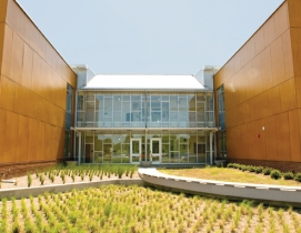 College Park Elementary School, Virginia Beach, Va., has an integrated wetland g