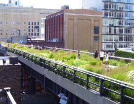 The High Line effect: Placemaking as an economic development engine