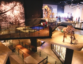 The Past Worlds Terrace at the Natural History Museum of Utah, a $103 million, 1