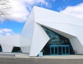 Building a Habitat with Paint – the Polk Penguin Conservation Center