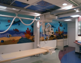 The Rady Childrens Hospital in San Diego is an example of a facility on the cut